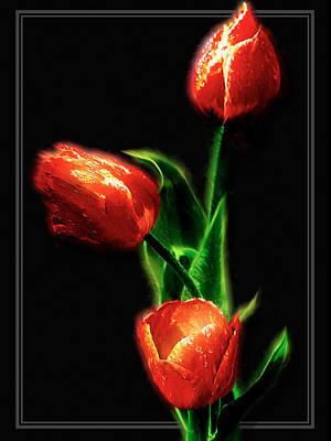 Digital Art - Red Tupils On Black by Patrick Turner