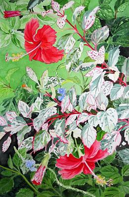 Painting - Red Variegated Hibiscus by Vishwajyoti Mohrhoff