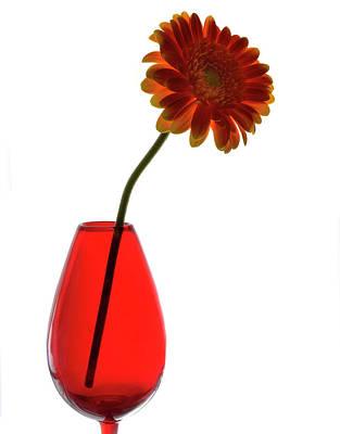 Red Vase Original by Terence Davis