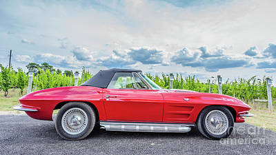 Red Vintage Corvette Sting Ray Vineyard Art Print by Edward Fielding