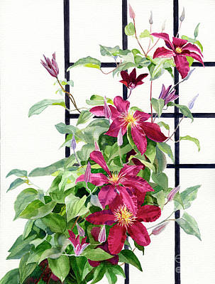 Red Violet Clematis On A Trellis Original