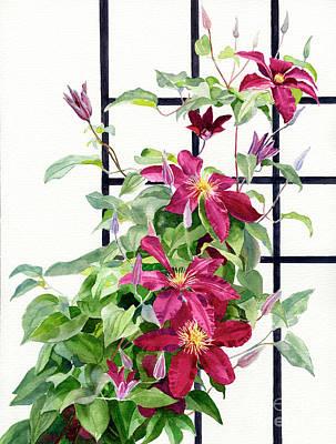 Red Violet Clematis On A Trellis Original