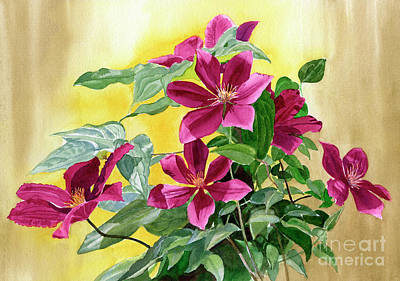 Vines Painting - Red Violet Clematis With Gold Background by Sharon Freeman