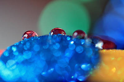 Photograph - Red Water Drops by Angela Murdock
