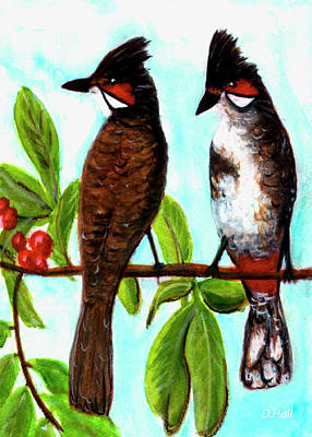 Red Whiskered Bulbul Painting - Red-whiskered Bulbul Bird, #246 by Donald k Hall