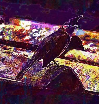 Red Whiskered Bulbul Digital Art - Red Whiskered Bulbul Bird Bulbuls  by PixBreak Art