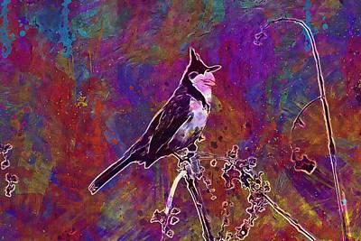 Red Whiskered Bulbul Digital Art - Red Whiskered Bulbul Bird  by PixBreak Art