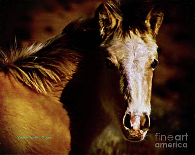 Painting - Red Willow Pony Lx by Charles Muhle