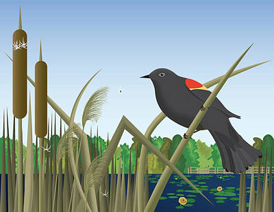 Mockingbird Digital Art - Red Wing Black Bird Perched On Reed In Wetland Marsh  by Andrea Hill
