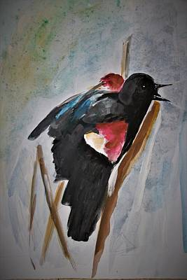 Painting - Red Winged Blackbird. by Khalid Saeed