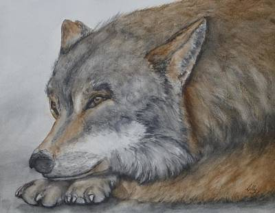 Painting - Red Wolf by Kelly Mills