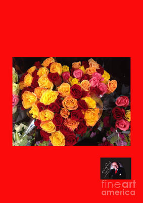 Photograph - Red Yellow Pink Roses 1 by Richard W Linford
