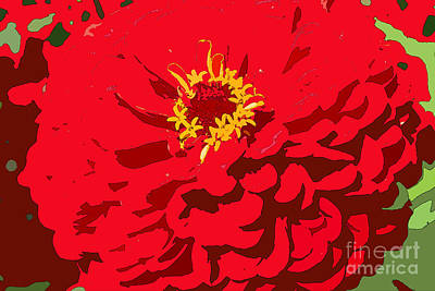Photograph - Red Zinnia by Jeanette French