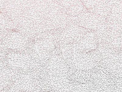 Wood Digital Art - Red.394 by Gareth Lewis