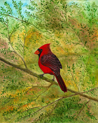 Painting - Redbird In Hemlock by FT McKinstry