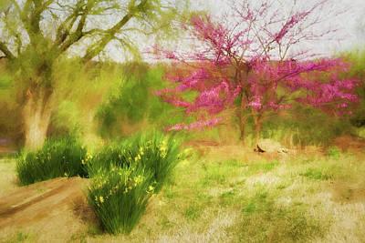 Photograph - Redbud And Daffodils by James Barber