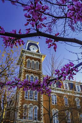 University Of Arkansas Photograph - Redbud At Old Main by Damon Shaw