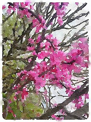 Painting - Redbud by Shannon Grissom