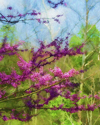 Photograph - Redbud Tree by James Barber