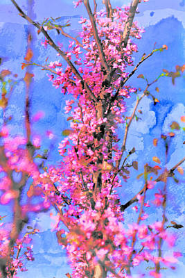 Painting - Redbud Tree Watercolor by Ericamaxine Price