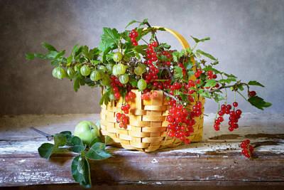 Redcurrants And Gooseberries Art Print