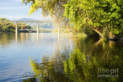 Photograph - Redding Park by Randy Wood