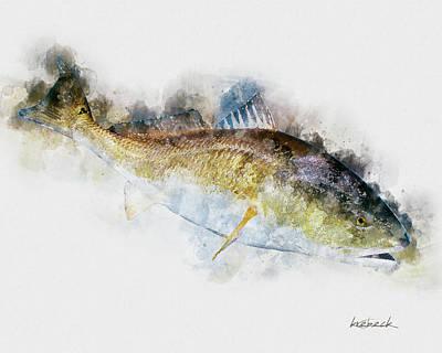 Redfish Art Print by Kent Krebeck