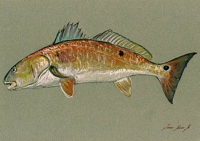 Animal Wall Art - Painting - Redfish Watercolor Painting by Juan  Bosco