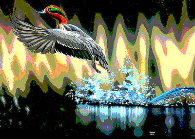 Loon Mixed Media - Redhead Duck by Charles Shoup