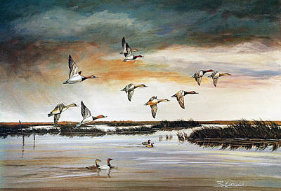Water Scene Painting - Redheads In Flight by Raymond Edmonds