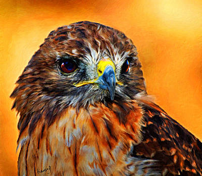 Digital Art - Redtailed Hawk by Johanne Dauphinais