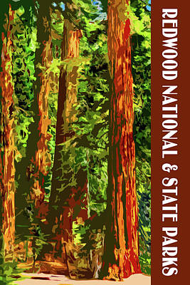Digital Art - Redwood National Park by Chuck Mountain