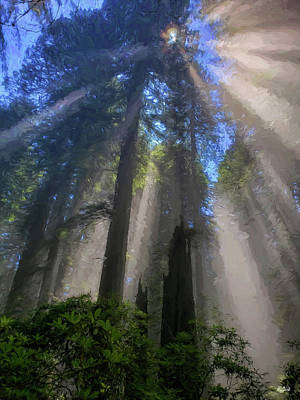 Digital Art - Redwood Sunbeam Impressions by Greg Norrell