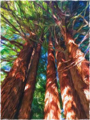 Mixed Media - Redwoods 1 by Jonathan Nguyen