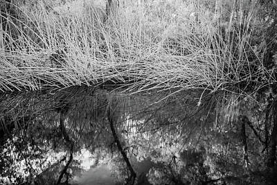 Photograph - Reed And Creek - Infrared by Alexander Kunz