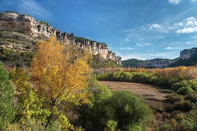 Reed Beds At Una Lake In Autumn, Serrania De Cuenca, Spain Art Print by Peter Eastland