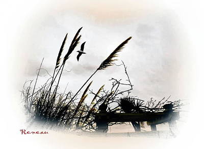 Photograph - Reeds And Sea by Sadie Reneau