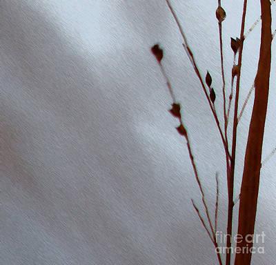 Photograph - Reeds Lake by Linda Shafer