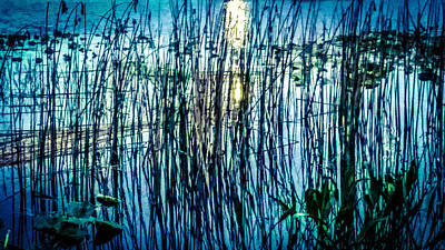 Photograph - Reeds Reflections by Beth Hughes