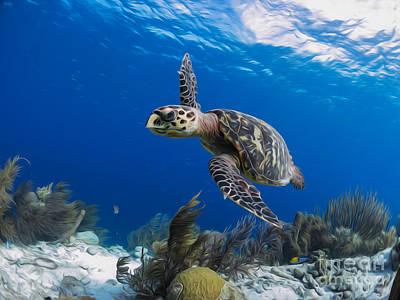 Alejandro Gutierrez Photograph - Reef Flight by Athoyo