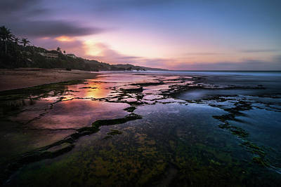 Photograph - Reef Glow by Andre Donawa