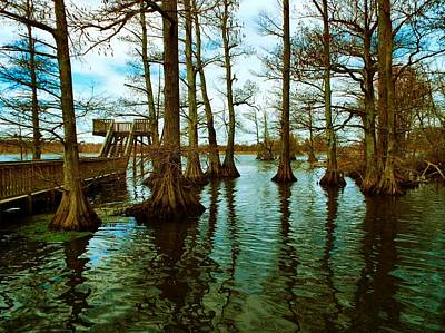 Reelfoot Beauty Art Print by Julie Dant