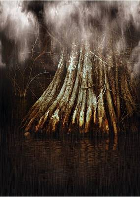 Cypress Swamp Photograph - Reelfoot In Gentle Rain by Julie Dant