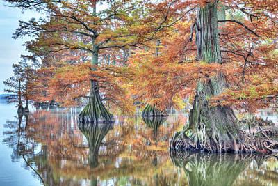 Photograph - Reelfoot Lake 2015 05-2 by Jim Dollar