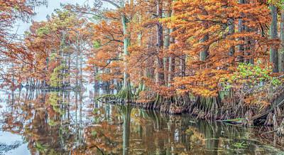 Photograph - Reelfoot Lake 2015 12-13 Panorama by Jim Dollar