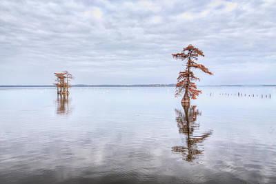 Photograph - Reelfoot Lake 60 by Jim Dollar
