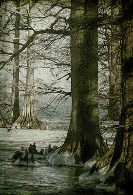 Digital Art - Reelfoot Lake Winter by Bonnie Willis