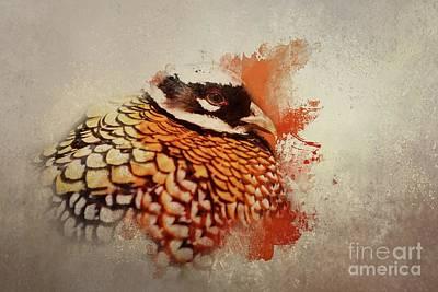 Pheasant Mixed Media - Reeve's Pheasant by Eva Lechner