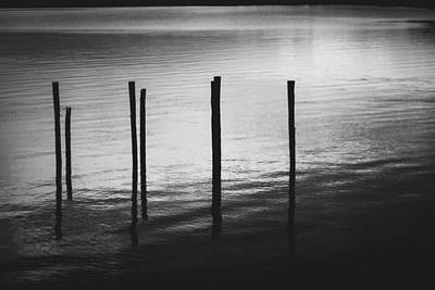 Photograph - Reflect by Amber Dopita