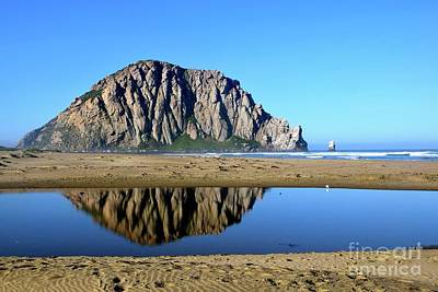 Photograph - Reflect And Relax by Johanne Peale